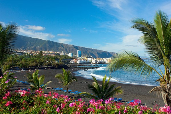Yacht charter in Tenerife 2