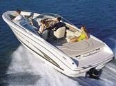 - Sea Ray 230 BR