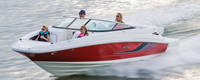 - Sea Ray 220 Sundeck
