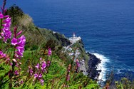 Alquiler de barcos en Azores 3