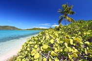 Yacht charter in the British Virgin Islands 3